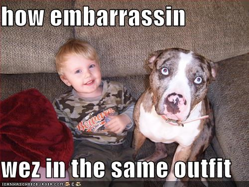 camouflage child couch indoors kids pitbull - 1719402752