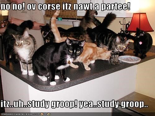 friends Party school studying - 1726383872