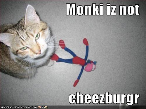 Cheezburger Image 1727250688