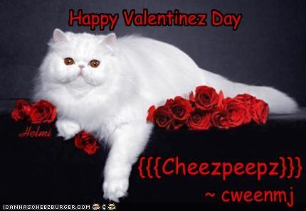Cheezburger Image 1728715520