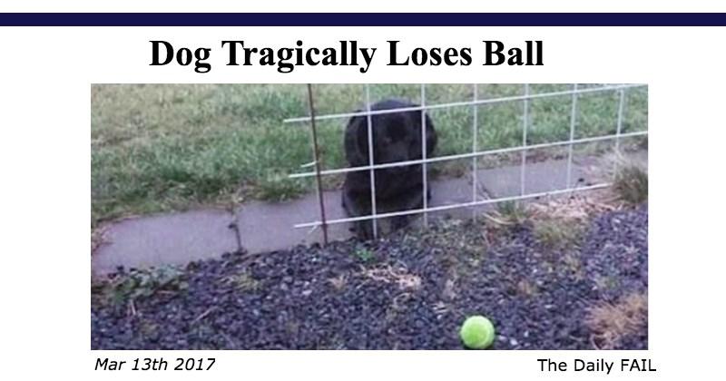 FAIL Blog FAIL Memes The Daily Fail meme list - 1732357
