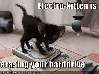 Electro-kitten is  erasing your harddrive