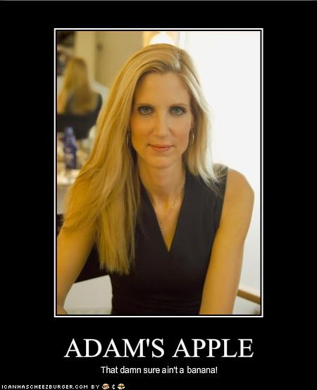 Ann Coulter,Media,Republicans