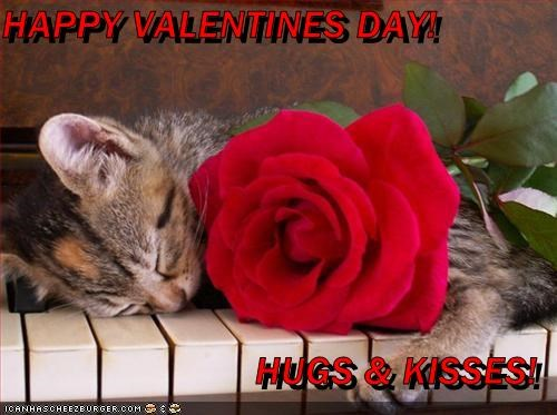 Happy Valentines Day Hugs Kisses Cheezburger Funny Memes