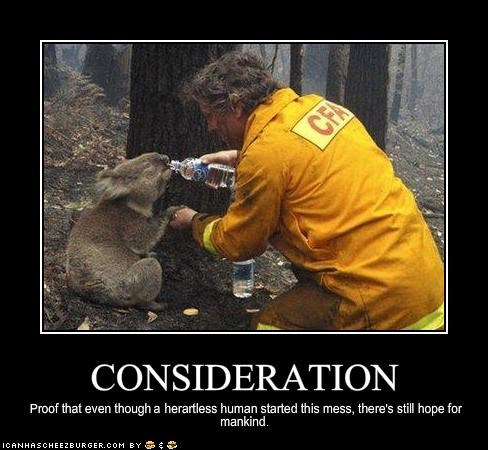 animals australia firefighters mankind