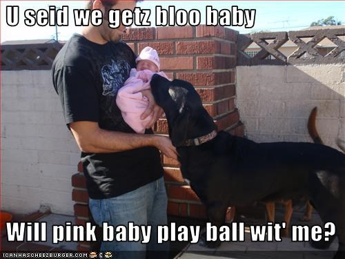 baby ball brother playing sister whatbreed - 1746879232