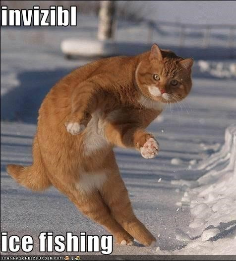Invizibl Ice Fishing Cheezburger Funny Memes Funny Pictures