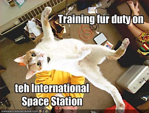 flying,outer space,training