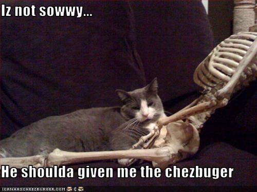 Cheezburger Image 1755220224