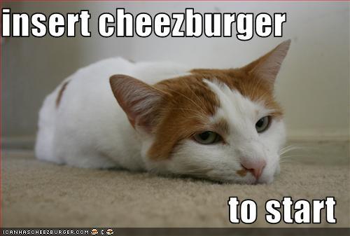 Cheezburger Image 1757014272