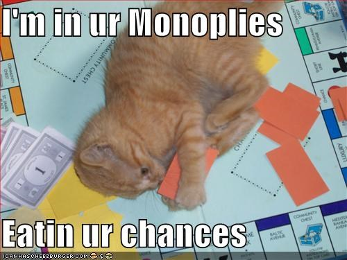 boardgames,cute,destruction,ginger,kitten,monopoly,nom nom nom