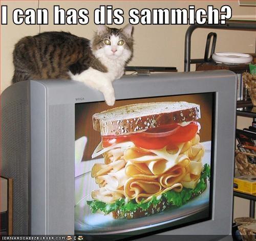 hungry nom nom nom sandwich TV - 1762209536