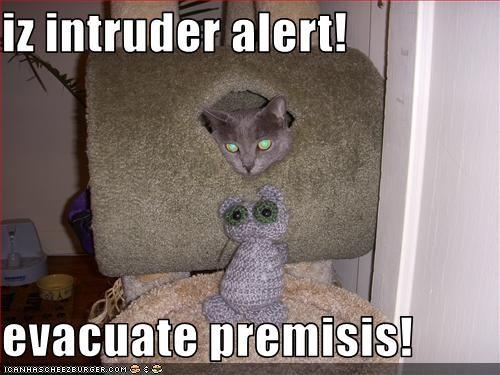 iz intruder alert!  evacuate premisis!