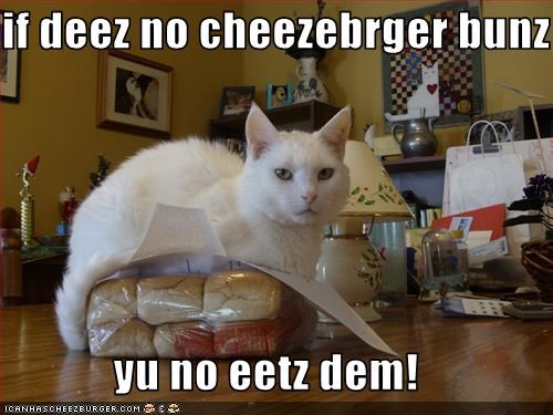 Cheezburger Image 1767202560