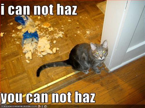 destruction fud mess rules - 1770647808