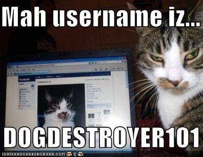 Cheezburger Image 1771389696