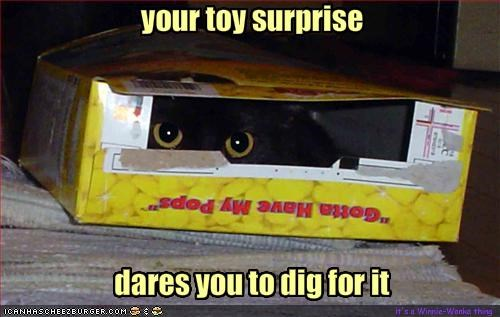 your toy surprise