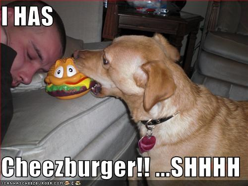 Cheezburger Image 1779450624