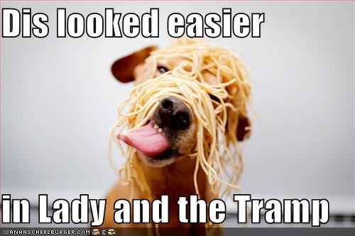 food,lady and the tramp,spaghetti,whatbreed