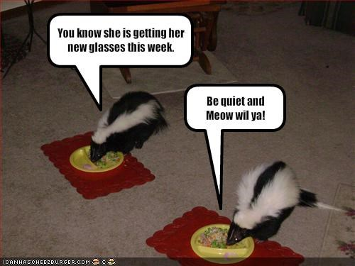 disguise,fud,lolskunks,nom nom nom