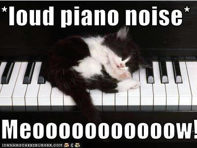 Loud Piano Noise Meooooooooooow Cheezburger Funny Memes