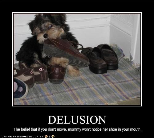 delusion FAIL mom mouth shoes yorkshire