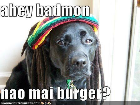 Cheezburger Image 1786349824