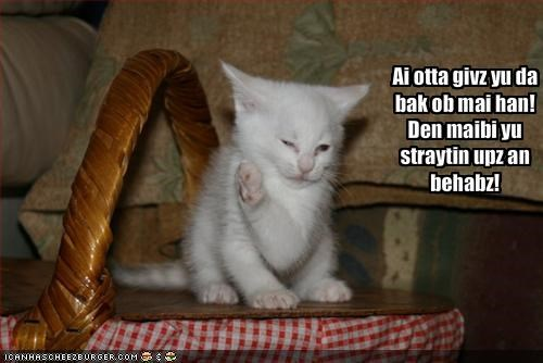 Cheezburger Image 1792093440