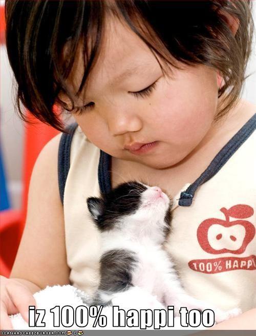 baby cute happy kitten - 1793053952