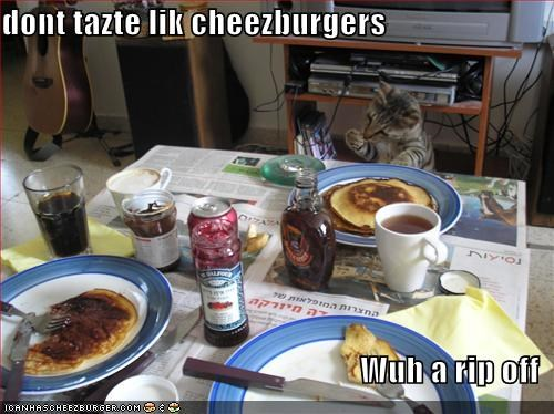 Cheezburger Image 1795141888