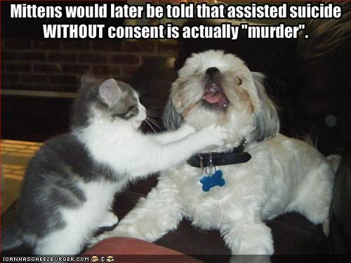 "Mittens would later be told that assisted suicide WITHOUT consent is actually ""murder""."