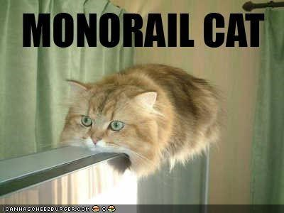 cat fat Hall of Fame lolcat LOLs To Go monorail vehicle - 1802044160