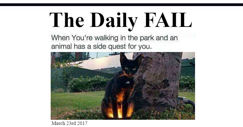 FAIL,Memes,The Daily Fail,meme list