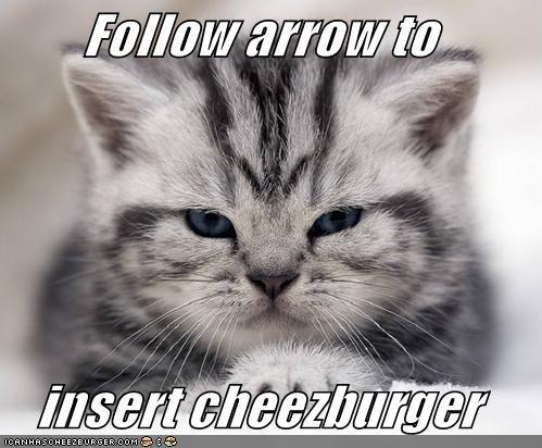 Cheezburger Image 1805209856