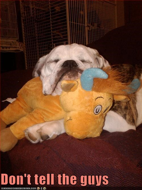 bulldog couch sleeping toys - 1807158528