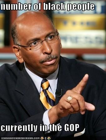 michael steele,Republicans,rnc