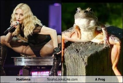 Madonna Totally Looks Like A Frog