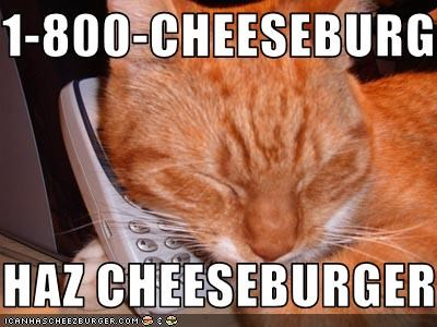 Cheezburger Image 1825602304