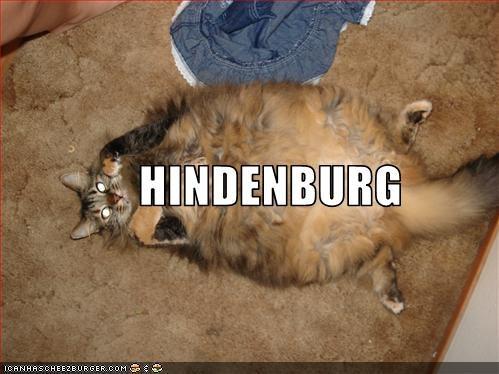 Cheezburger Image 1829906176