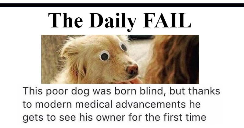 FAIL Memes The Daily Fail meme list - 1834245