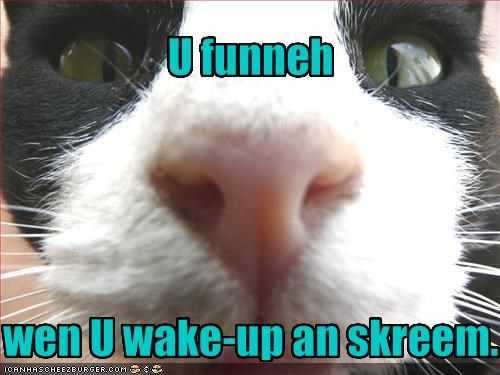 scary screaming wake up - 1836020992