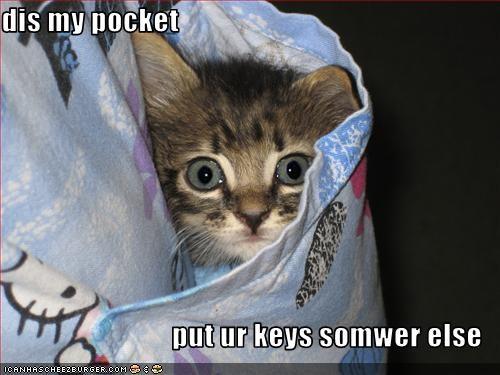 cute keys kitten pocket - 1840538368