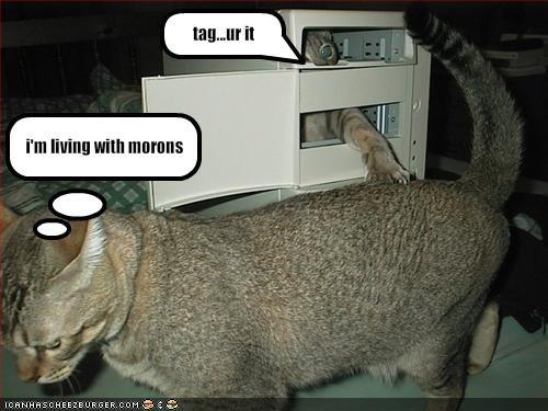 computer dumb friends tag - 1843552000