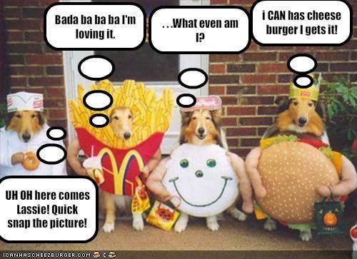 Cheezburger Image 1844651264