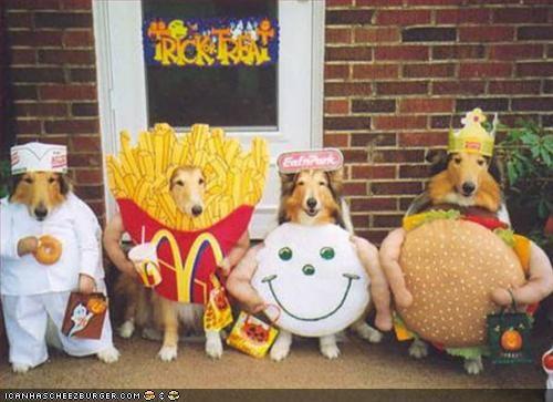Cheezburger Image 1844848896
