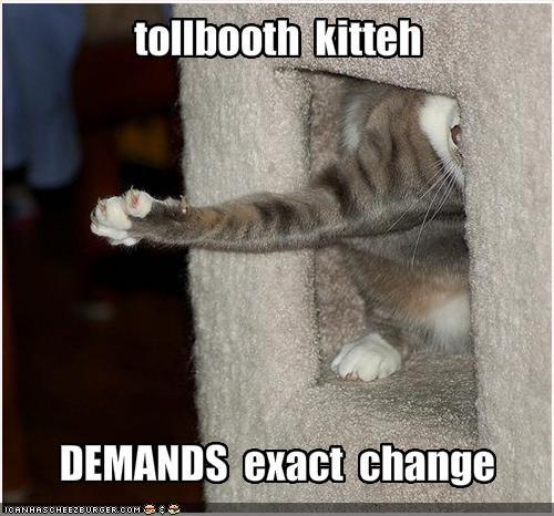 cat tree demands money - 1849395968