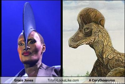 animals dinosaurs grace jones movies Music