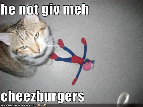 Cheezburger Image 1851986176