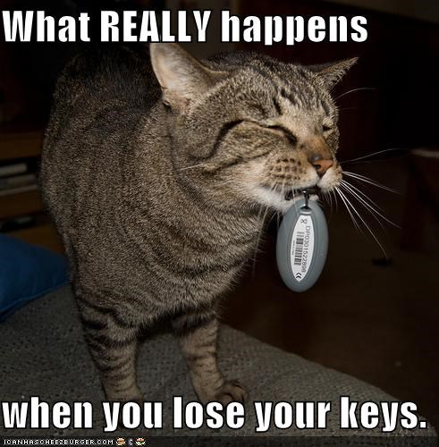 What Really Happens When You Lose Your Keys Cheezburger Funny Memes Funny Pictures