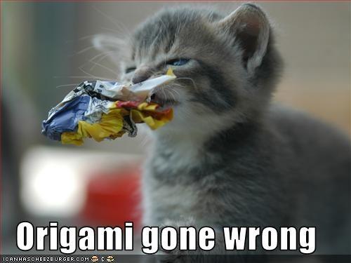 cute kitten nom nom nom origami - 1853878016